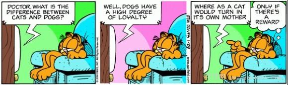 看漫画学口语:加菲猫卡通系列之猫和狗的区别